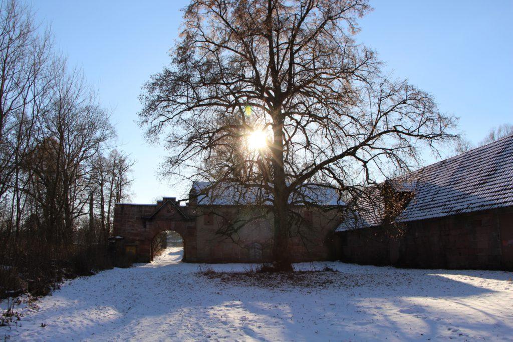 Ruine Schloss Oberbürg